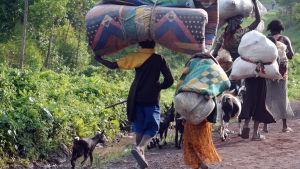 Flyktingar i Kongo.