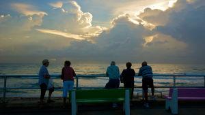 Pensionärer i Florida tittar på solnedgången i Lake Worth.