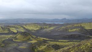 Vulkanen Laki på Island.