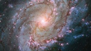 Hubbles foto av spiralgalaxen Messier 83.