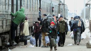 Migranter från Syrien, Irak och Afghanistan går ombord på ett tåg i den serbiska staden Presevo