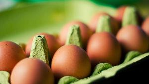 En kartong med bruna ägg.