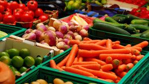 Flera gröna lådor fulla med grönsaker som tomat, kålrot, morot och zucchini står brevid varandra.