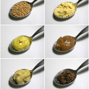 Skedar med olika sorters senap.