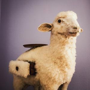 Täytetty lammas jossa on ulosvedettäviä laatikoita ja tarjotin lampaan selässä. Salvador Dalín tekemä.