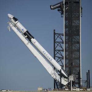 Rymdraketen Falcon 9 lyfts på plats inför avfärden från Kennedy-rymdcentret i Florida.
