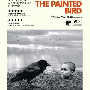 Filmplanschen till The Painted Bird. En kråka sitter och iakttar en pojke som är nedgrävd till halsen i lera.