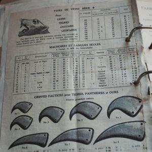 Gammal mapp med blad med text på franska, bland annat beställningsblankett för olika sorters kattdjursklor.