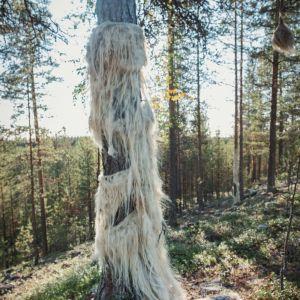 Puuhun kiinnitetty villainen partamainen taideteos