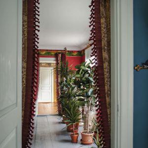 Näkymä oviaukosta huoneeseen, lattialla viherkasveja