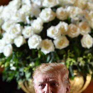 Donald Trump i Mar a Lago framför en jättebukett vita blommor i vas.