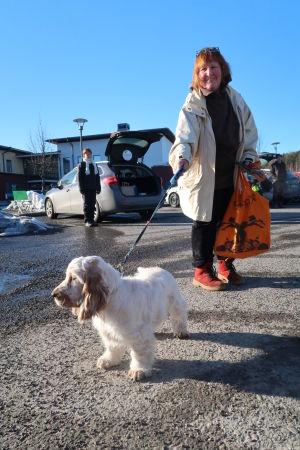 Vit liten hund fast i koppel på parkeringsplats.