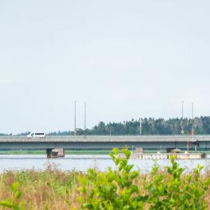Pojovikens bro