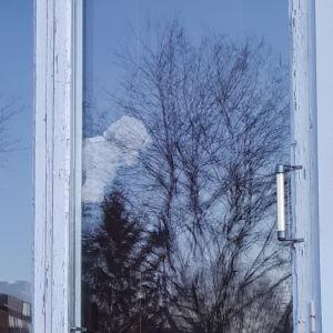 Nalle i fönstret på Lönnvägen i Åbo.