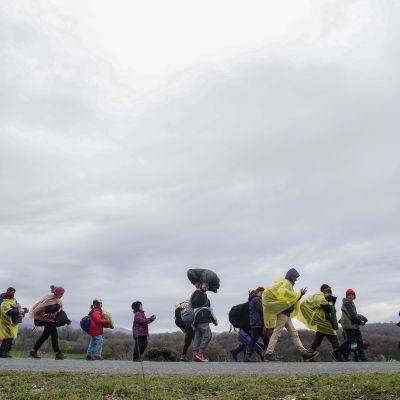 Flyktingar nära Idomeni i norra Grekland.