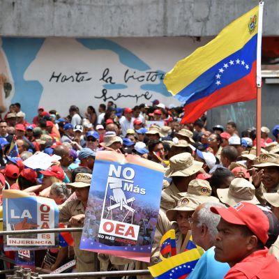 Anhängare till Maduro protesterar i Venezuela.