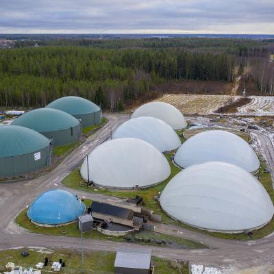 Jepuan biokaasulaitoksen vihreissä säiliöissä on biokaasua ja valkoisissa prosessissa syntyvää lannoitetta.