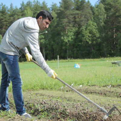 Mubarak Al Safiri Kuwaitista.
