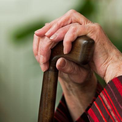 Ikäihmisen kädet nojaavat kävelykeppiin.