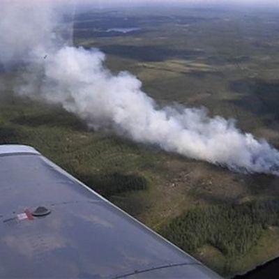 Metsäpalo ilmasta nähtynä.