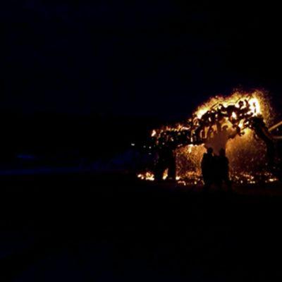 Palokunta sammuttaa Kyläsaaren kärjessä palanutta Mammutti-tilataideteosta.