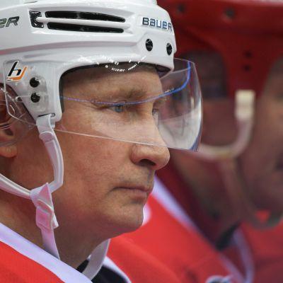Rysslands president i Sotji den 10 maj 2017.