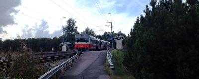 Ett litet grårött lokaltåg står på en station i landsbygden, buskar och gräs syns, en asfalterad gång till perrongen.