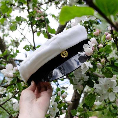 Ylioppilaslakki omenapuussa.