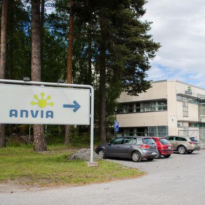 Anvia i Vasa.