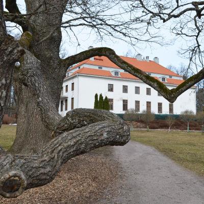 Träskända gård, träskända i esbo 20.3.2015