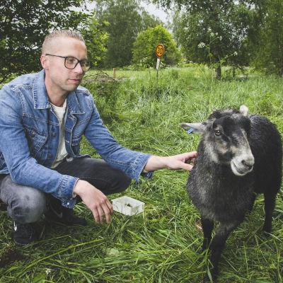 Magnus Hansén och ett får i hagen.
