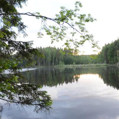 järvimaisema Syväjärveltä Salosta