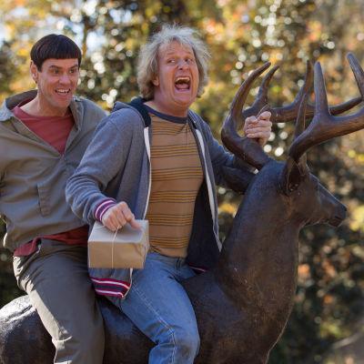 Bild från filmen Dum och dummare 2.
