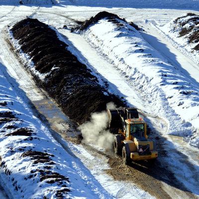 Hjullastare lastar rötrester från biogasanläggningen vid Stormossen.