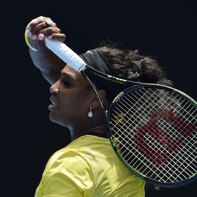 Serena Williams, Melbourne, 24.1.2016.
