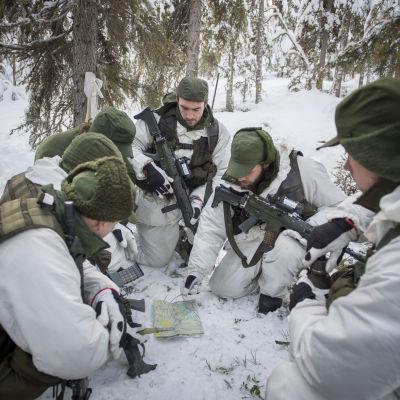 Svenska försvarsmakten. 85 soldater som mellan åren 2000 och 2010 gjorde sin värnplikt på K4, Arvidsjaur genomför vintern 2015 reptitionsutbildning.