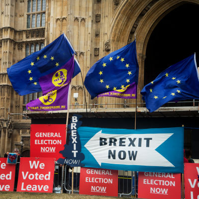 Demonstration för och emot brexit utanför det brittiska parlamentet 9.9.2019