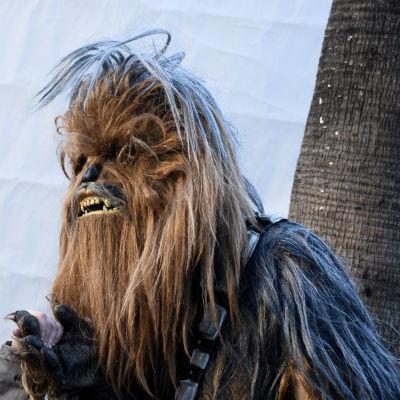 Chewbacca och ett fan.