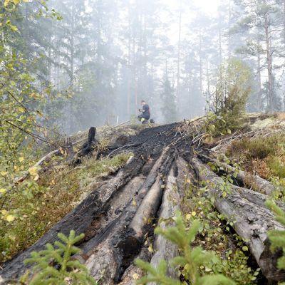 Skogsbranden i Västmanland  6.8.2014.