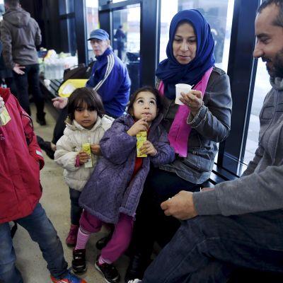 Irakiska flyktingar väntar på besked i Torneå. Familjen har rest i över tre månader från Bagdad genom Europa till Finland.