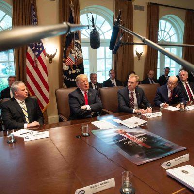 TV-mikrofonerna riktas mot president Trump under regeringssammanträdet.