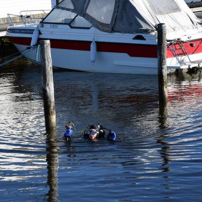 En dykare flyter vid ytan i en gästhamn.