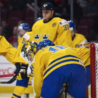 Sveriges juniorlandslag i ishockey fick än en gång se gulddrömmarna slås i kras.