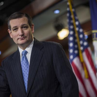 Den republikanska senatorn Ted Cruz i Washington den 12 februari 2015.