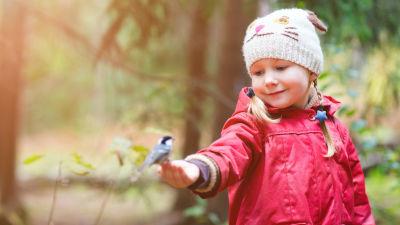 Pieni tyttö on metsässä ja pitää kädellään lintua.