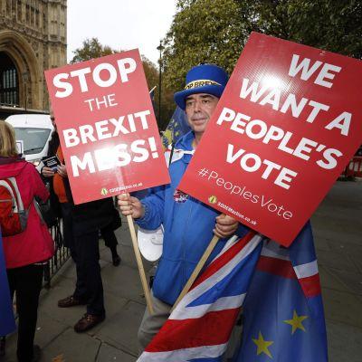 Demonstranter för och emot brexit  i centrum av London 15.11.2018.