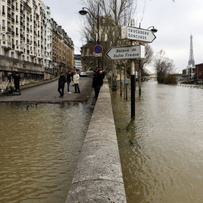 Översvämmad gata i Seine.