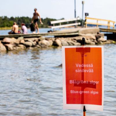 Uimarannalla kyltissä kerrotaan vedessä olevan sinilevää kolmella eri kielellä.