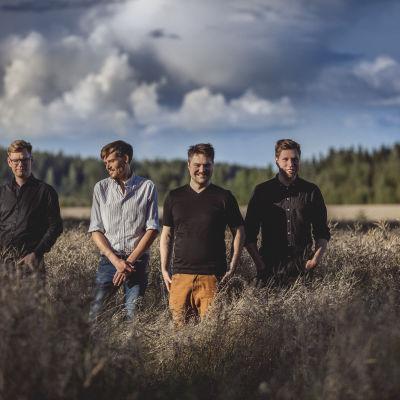 Verneri Pohjola Quartet uppträder på Kalkstrand Jazz 2015.