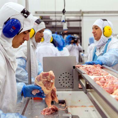 Köttindustri i Brasilien.